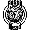 Fossil Head