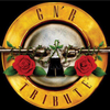 GNR Tribute needs an Axl Rose