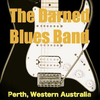 The Darned Blues Band
