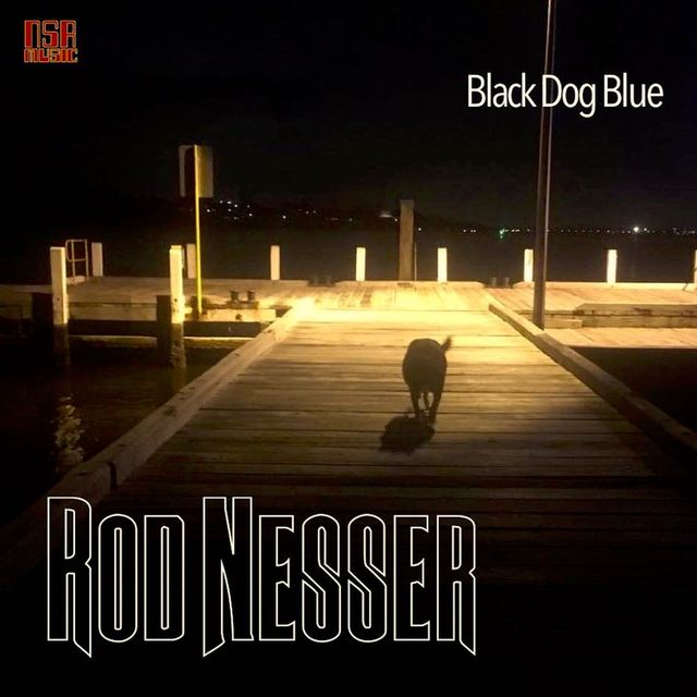 Rod Nesser and The Darned Blues Band