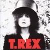 TRex5408