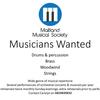Maitland Musical Society Orchestra